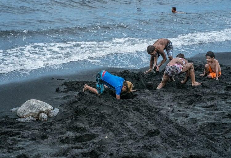 Weird Beaches Hawaii Kids