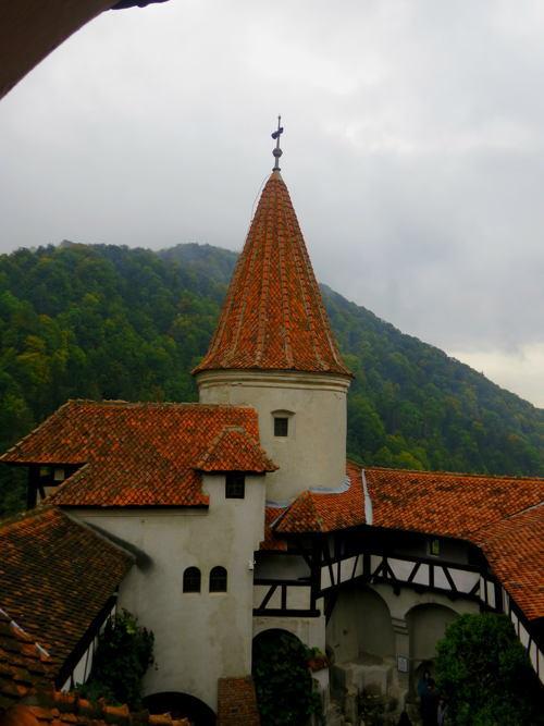 Dracula Castle View