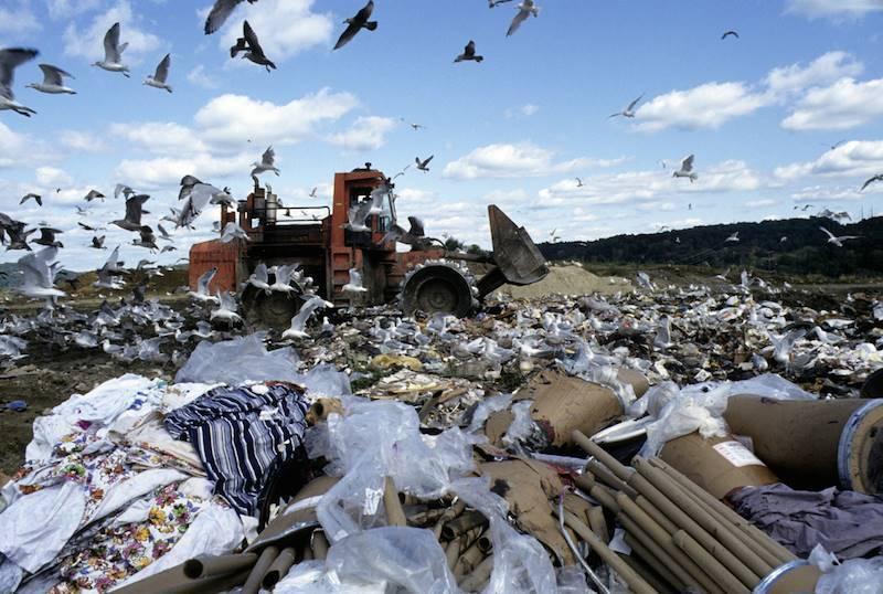 Garbage Crisis