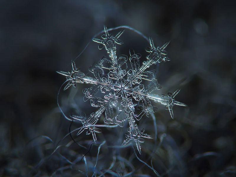 Snowflake in Detail