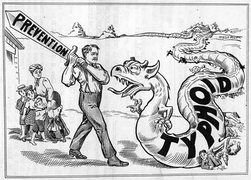 Political Cartoon on Typhoid
