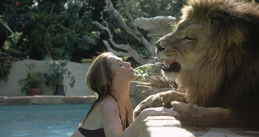 When One Hollywood Couple Lived With A Pet Lion