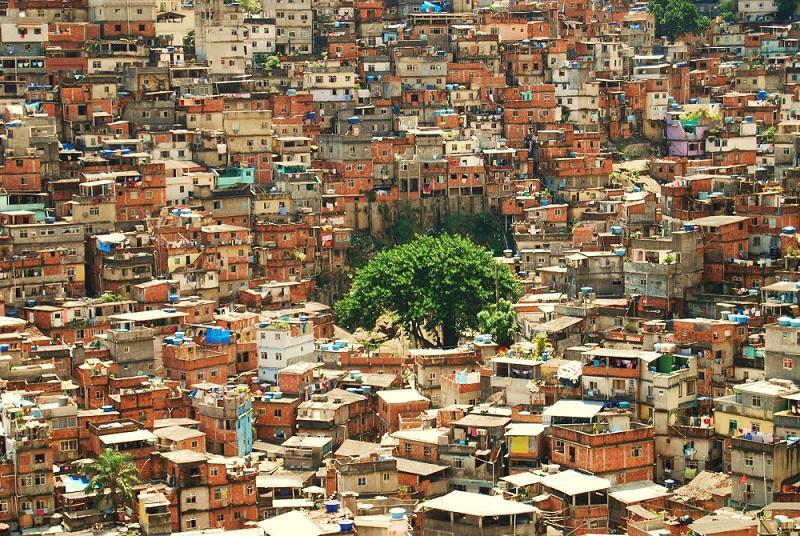 Favelas Lone Tree