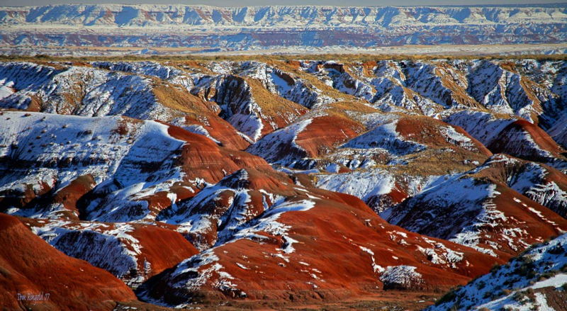 Coolest National Parks Petrified Forest