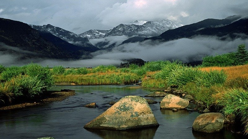 Rocky Mountain Fog