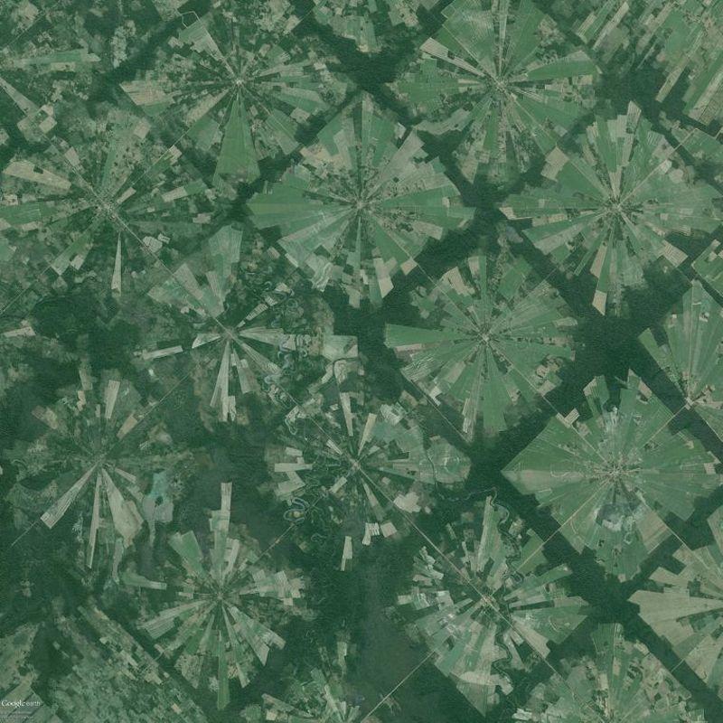 Rainforest Deforestation In Bolivia