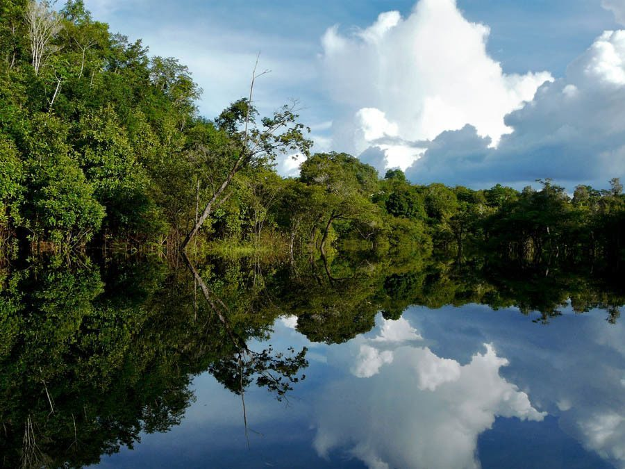 Disappearing Amazon River