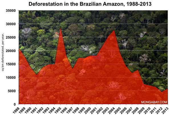 Chart On Amazon Deforestation