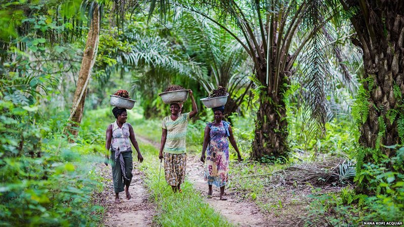 African Women from Village