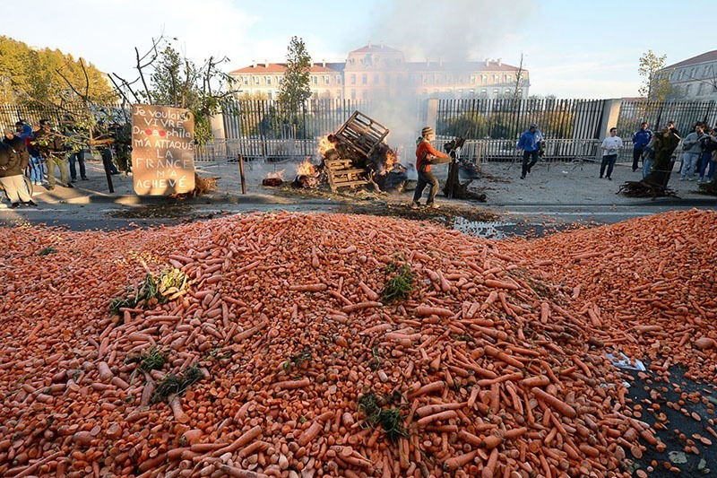 French Farmer Protests Carrots