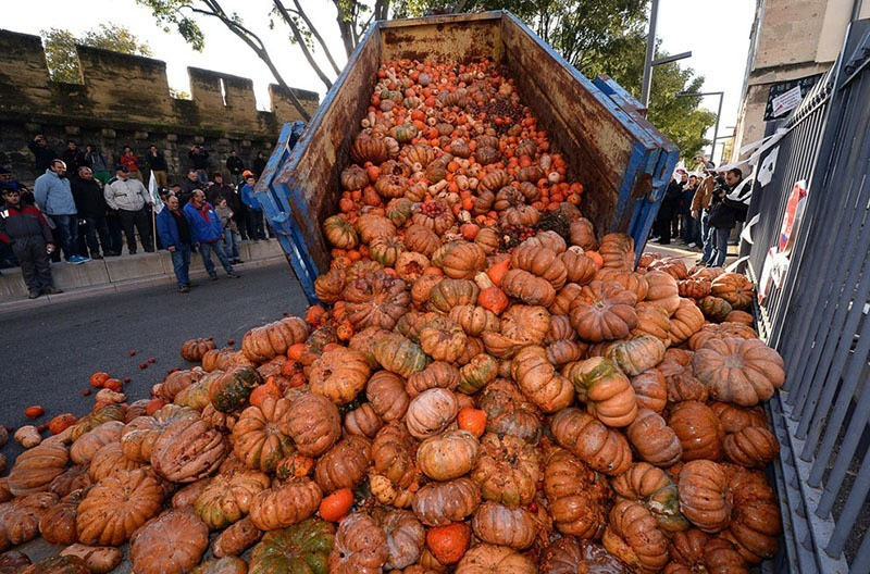French Farmer Protests Gourds