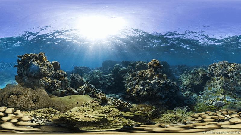 Barrier Reef Sunlight