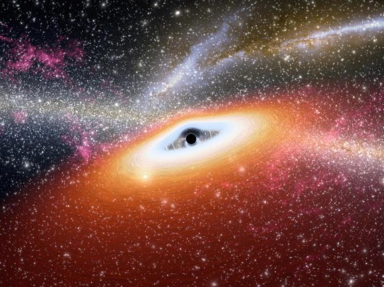 Black Hole Galaxy