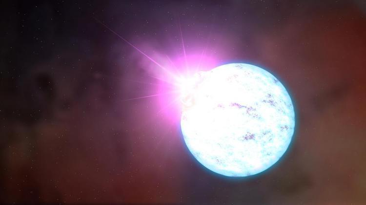 Black Hole Neutron