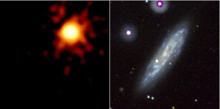 Black Hole Supernovas