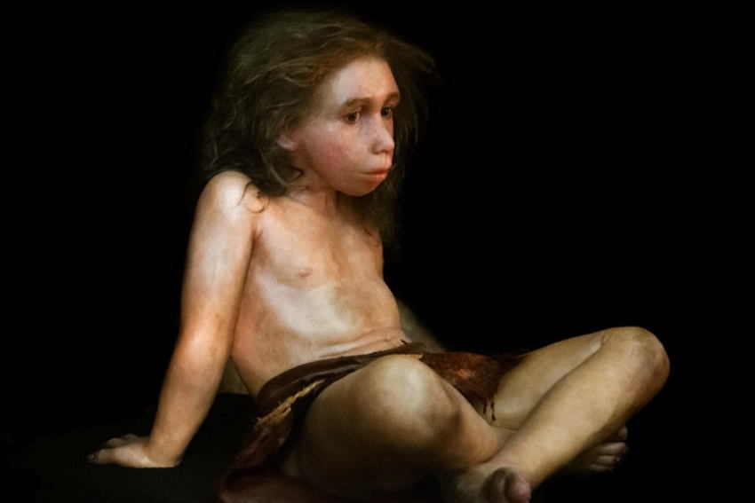 Human Neanderthal Relations Child