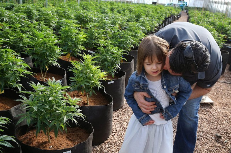 Using Marijuana To Treat Epilepsy