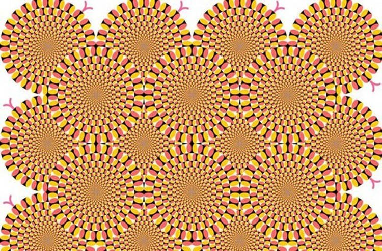 Optical Illusions Rotating Snakes