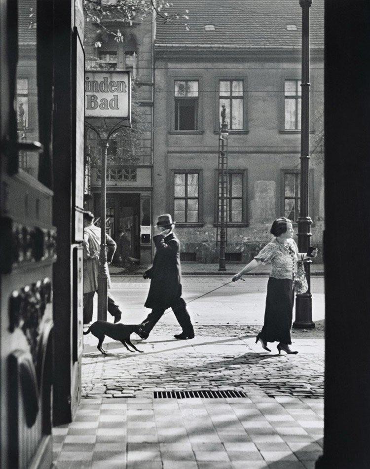 Jewish Life Berlin Dog Walk