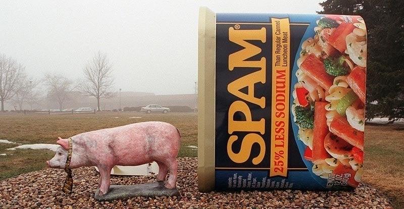 American Kitsch Spam Pig