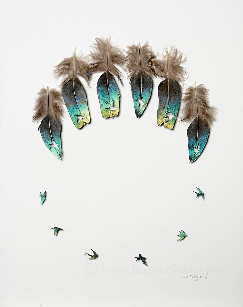 Art Made from Feathers