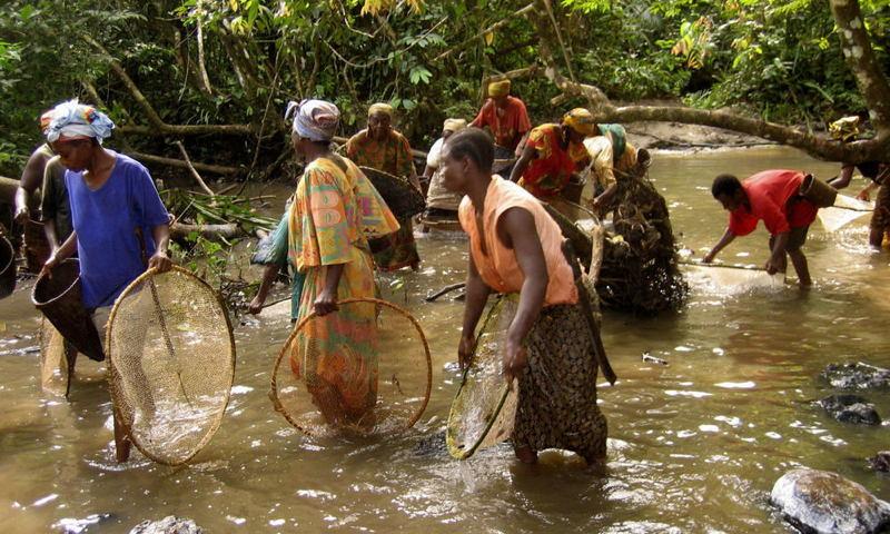 Global Poverty Congo