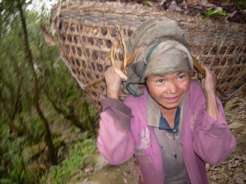 Global Poverty Nepal