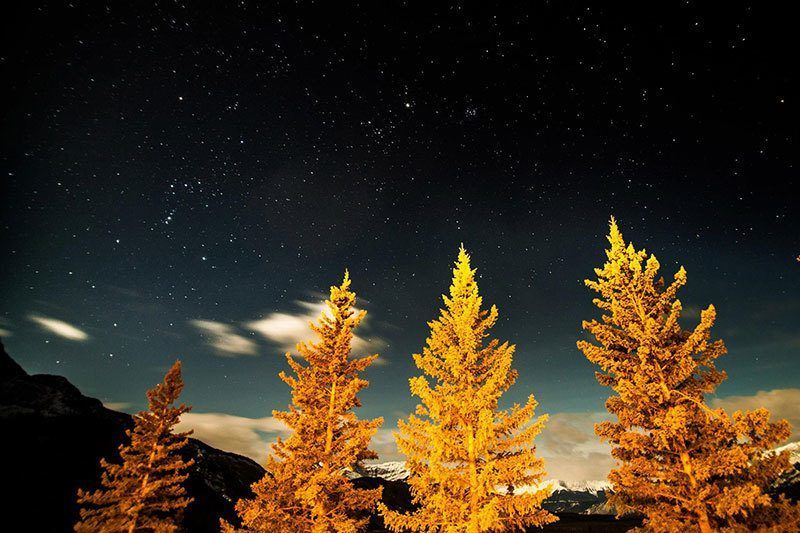 Evening at Jasper National Park