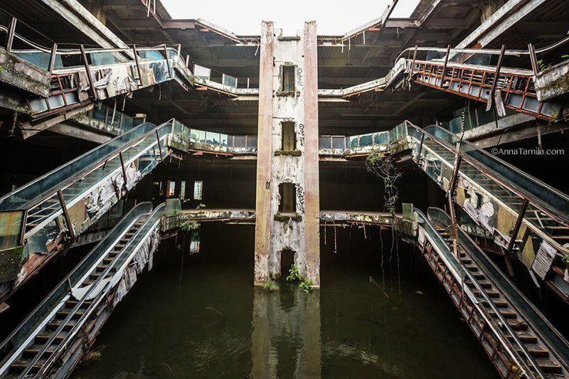 Koi Pond in Bangkok