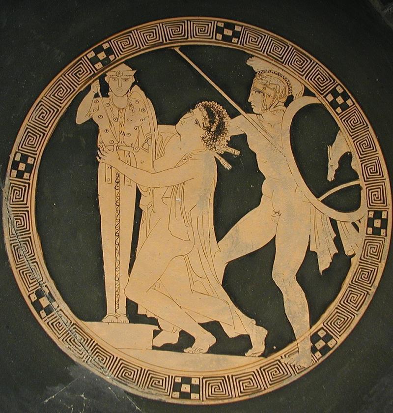 Mental Illness History Agamemnon