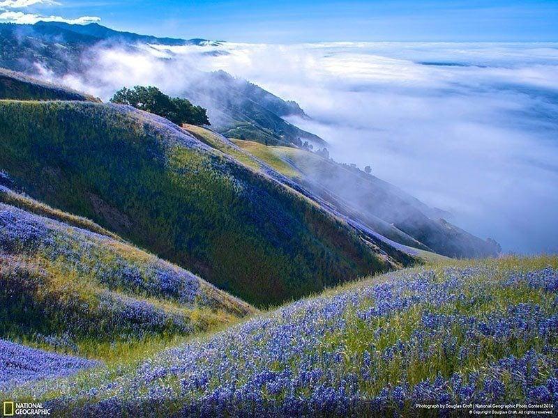 Big Sur Landscape Photography