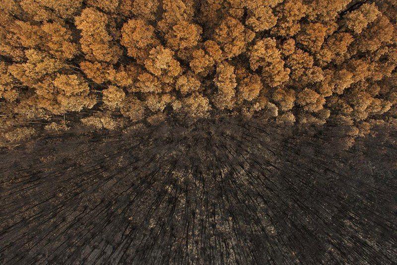 Top Nature Photography Craig Parry