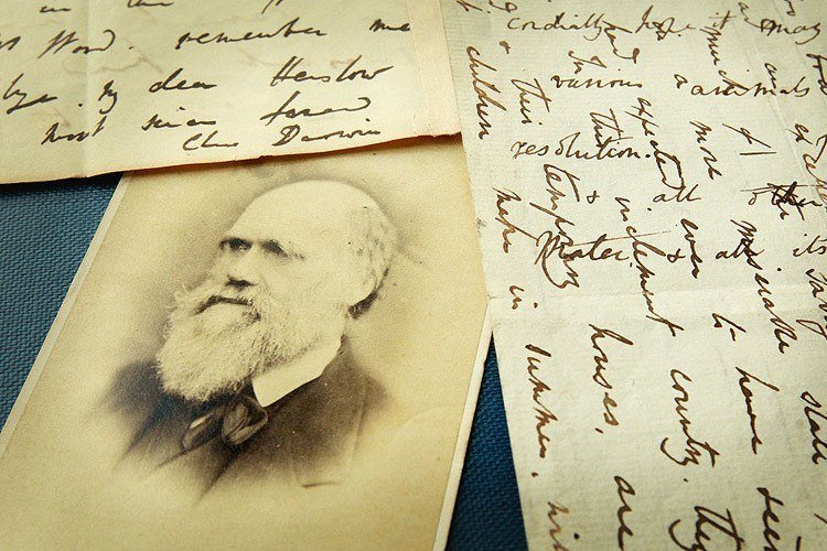 Original Letters