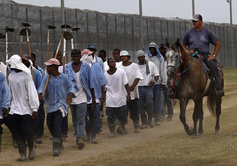 Jim Crow Louisiana Prison