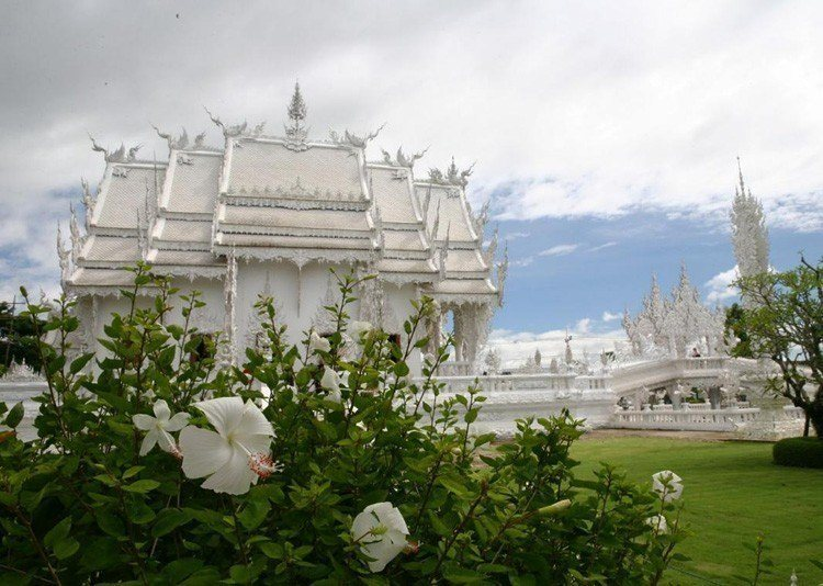 White Temple Landscape Bushes