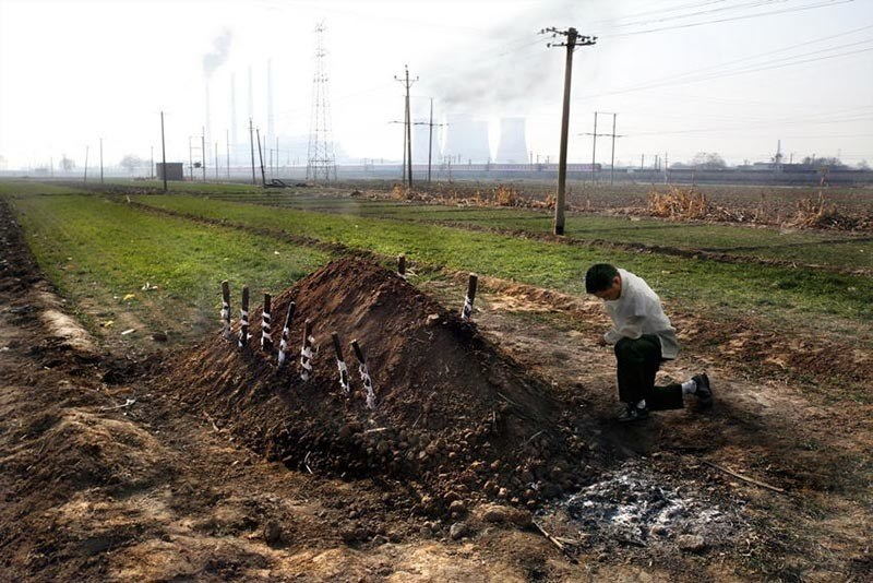 Chinese Cancer Villages Grave