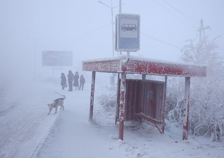 coldest city bus stop