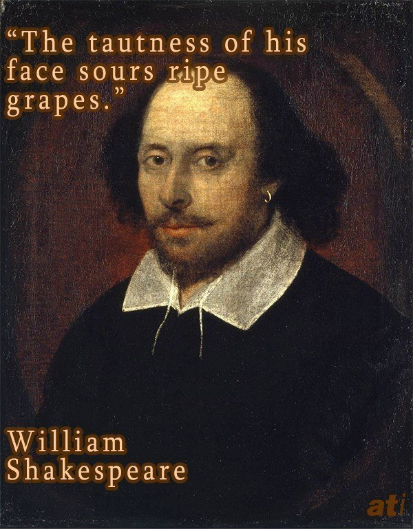 William Shakespeare History's Funniest Insults