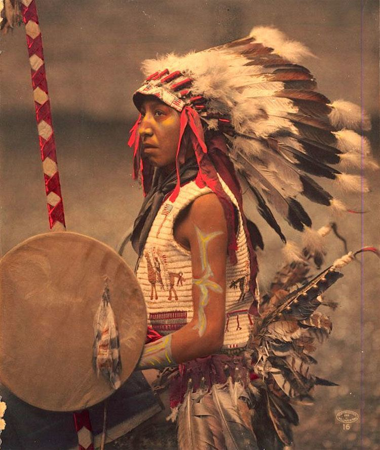 native american photography american horse