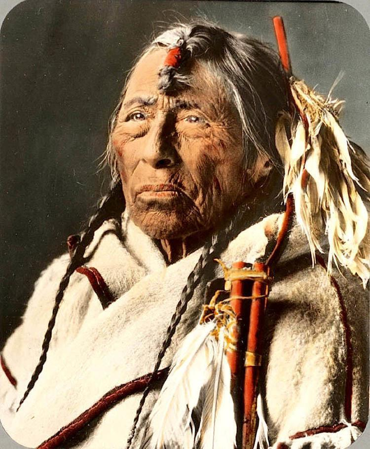 Montana Native Plants: Colored By Hand: Vintage Native American Photography