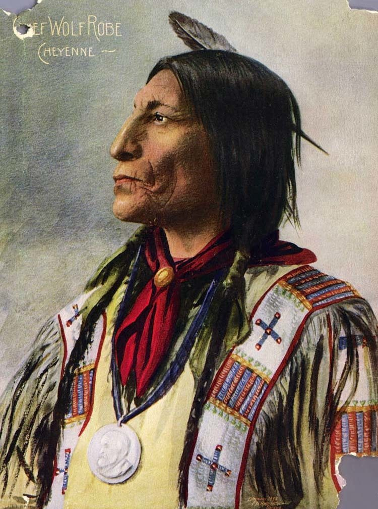 native american photography wolf robe