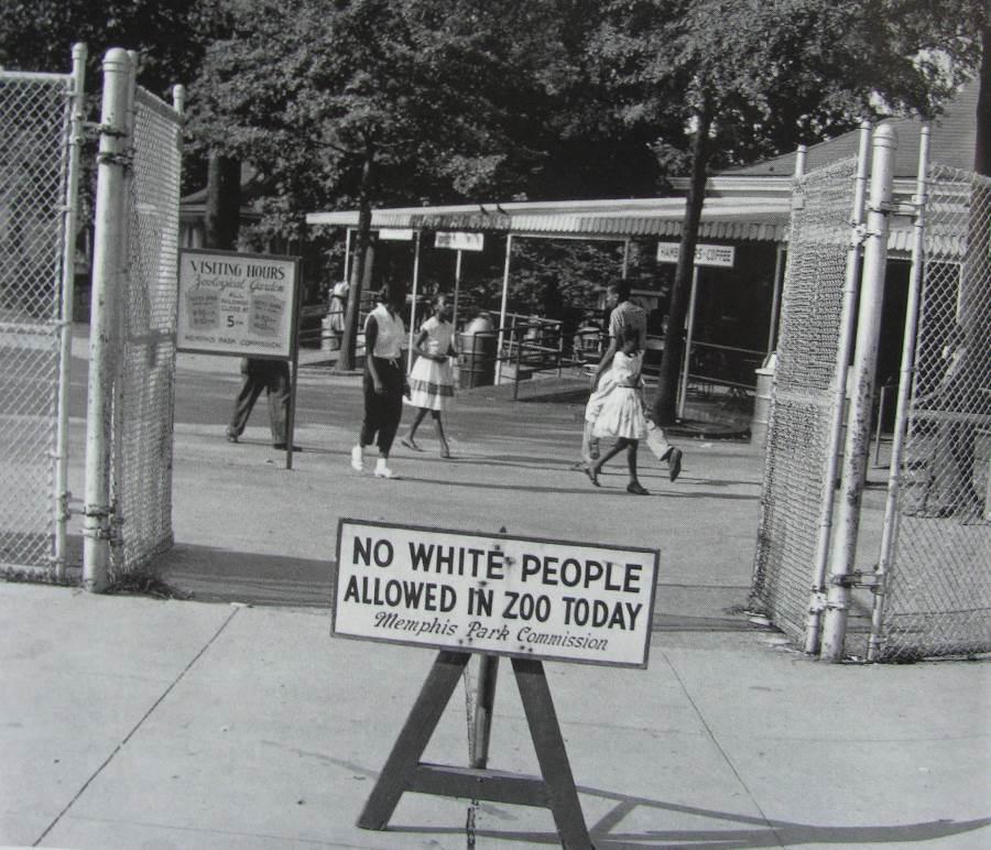 Negro Day Memphis Zoo