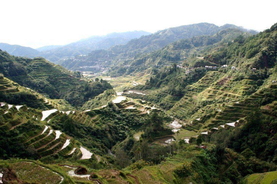 Rice Terraces Blending