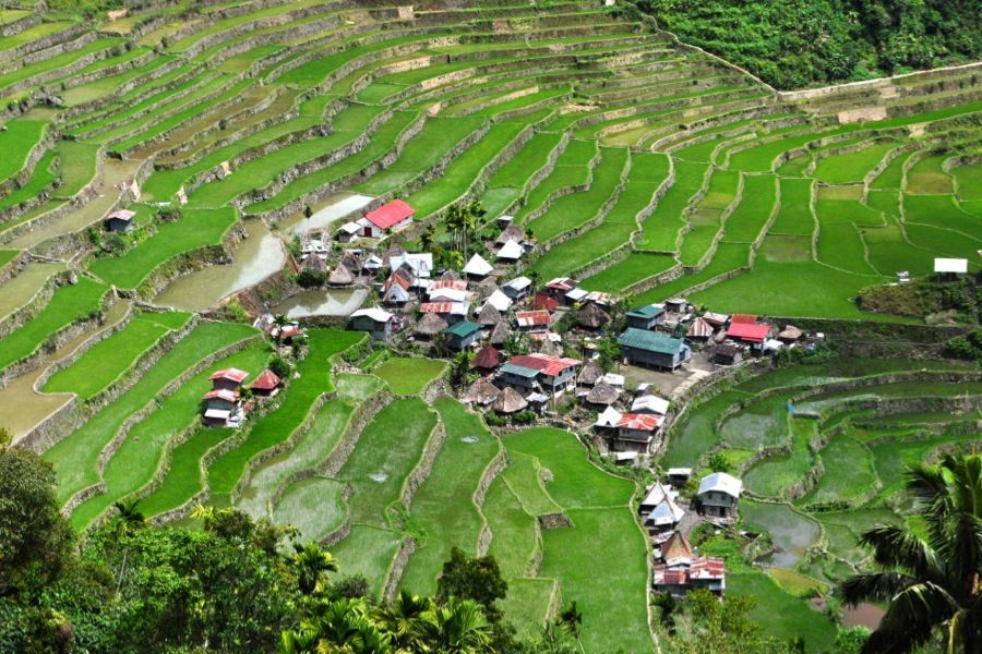 Rice Terraces Batad Village