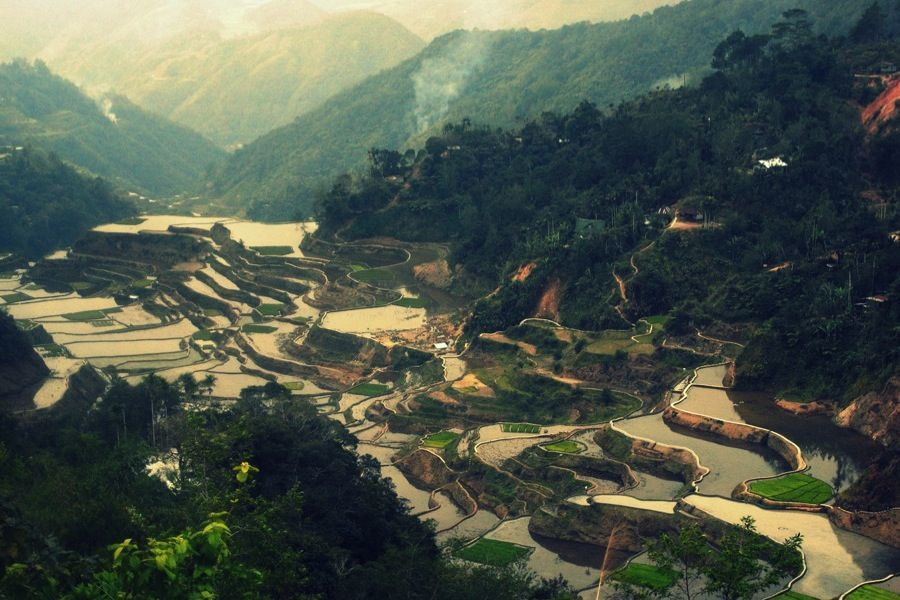 Rice Terraces Stewardship