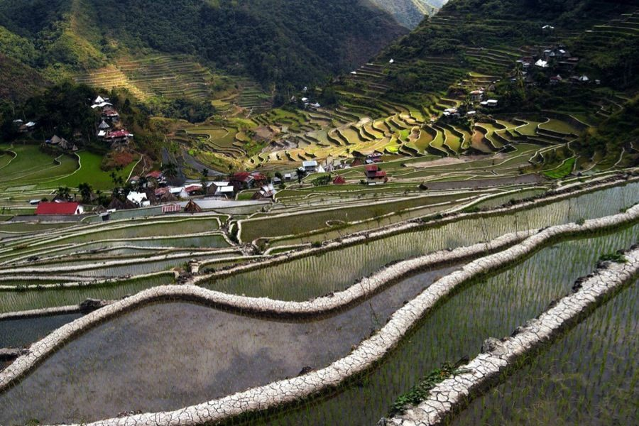 Rice Terraces Mud Walls