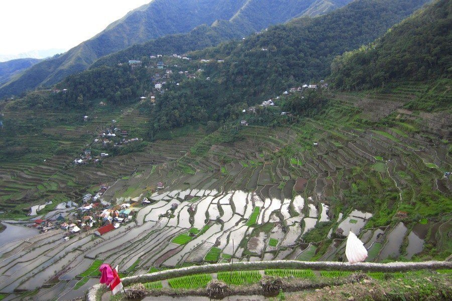 Rice Terraces Paradise Pools