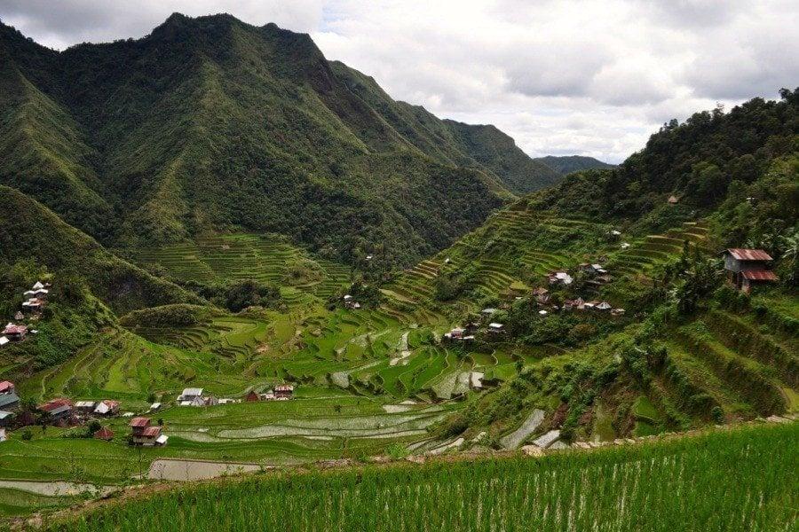 Rice Terraces Steep Mountain
