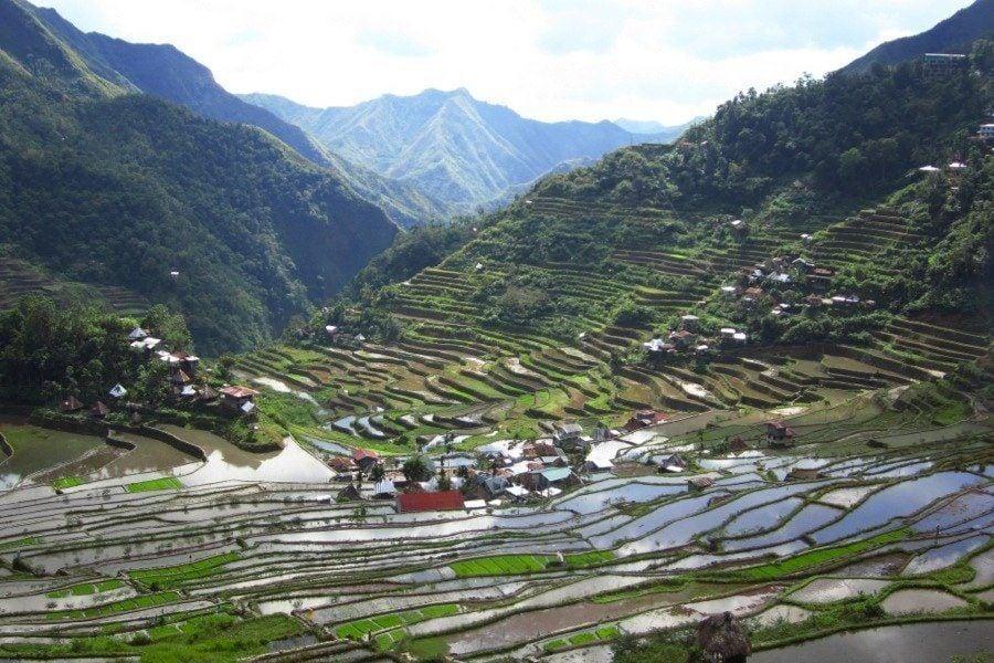 Rice Terraces World Heritage