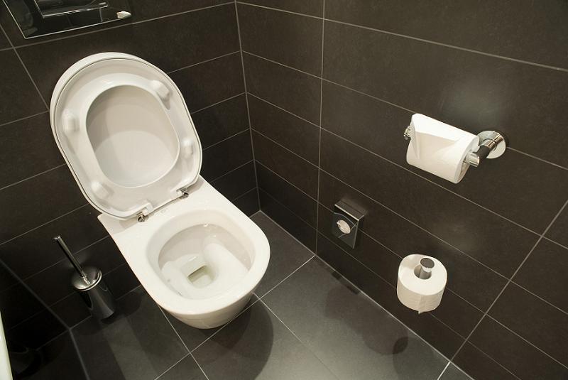 Toilet History Modern